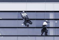 Arbetare som tvättar fönster av den moderna byggnaden Royaltyfria Bilder
