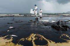 Arbetare tar bort och gör ren upp spilld råolja med absorberande välling Arkivfoto