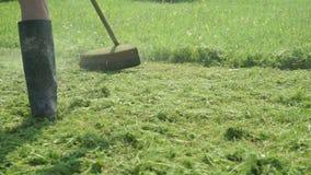Arbetaren klipper gräset genom att använda en gräsklippare lager videofilmer