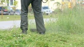 Arbetaren klipper gräset med gräsmattaradbeskäraren stock video