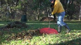 Arbetaren krattar höstsidor i trädgård Säsongarbete i höst 4K stock video