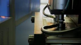 Arbetaren på fabriken förlägger preforms i maskinen för framställning av plast- flaskor stock video