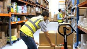 Arbetarförseglingskartong med emballagebandet stock video