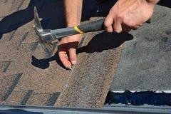 Arbetarhänder som installerar bitumentaksinglar Arbetarhammaren spikar in på taket Rooferen bultar en spika i taksinglarna Arkivbilder