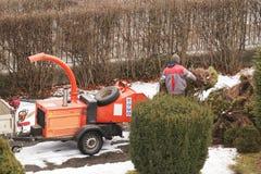 Arbetarna av hushållekonomin sätter i beställning som de gröna utrymmena i parkerar Beskära träd och buskar Krossa för trä royaltyfri bild