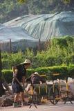 Arbetarna lägger vägar i shenzhen Arkivfoto