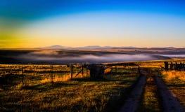 Arbete i en dimma I fotografering för bildbyråer