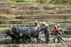 Arbete i mud Arkivfoto
