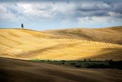 ` Arbia, Toskana Val d Hügel entworfen als enorme Wolldecken nach der Ernte Siena, Italien Lizenzfreies Stockfoto