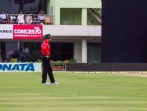 Arbitro del cricket Immagini Stock