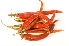 Arbol Chiles Royalty Free Stock Images
