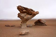 Arbol de Piedra Imagenes de archivo