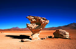 Arbol de piedra. This photo was taken in Bolivia Royalty Free Stock Photography