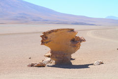 Arbol de piedra. Stone rock formation in Bolivia - Arbol de piedra Stock Photo