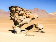 Arbol de Piedra, aka Stone Tree, in desert landscape of Andean Altiplano, Bolivia, South America Stock Images