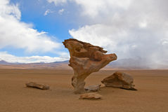 Arbol de piedra, albero di pietra Immagini Stock
