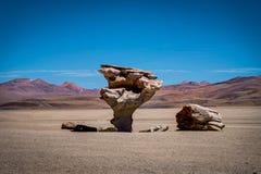 Arbol de piedra Altiplano Bolívia imagens de stock