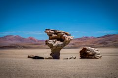 Arbol de piedra Altiplano Bolivia. Photo taken in August 2017 in Altiplano Bolivia, South America: arbol de piedra Altiplano Bolivia Stock Images