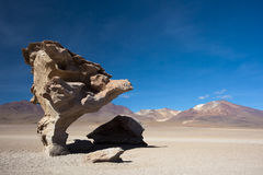 Arbol de Piedra, Bolivia. Arbol de Piedra - The Rock Tree in Uyuni, Bolivia Royalty Free Stock Image
