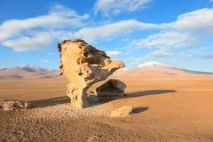 Arbol de piedra, Bolivia Royaltyfria Bilder