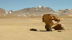 Arbol de Piedra in Bolivia. Rock formation Royalty Free Stock Images