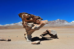Arbol de Piedra. Rockformation called Arbol de Piedra, made by wind erosion, Atacama desert Royalty Free Stock Photography