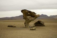 Arbol de piedra Royalty Free Stock Image