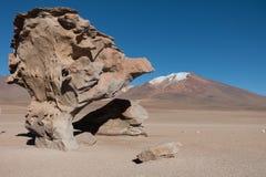 Arbol de Piedra, Salar de Uyuni, Bolivia arkivbild