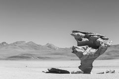 Arbol de Piedra. Stone rock formation in Bolivia Royalty Free Stock Photo