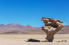Arbol de Piedra. Stone rock formation in Bolivia Royalty Free Stock Photos