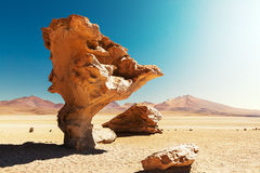 Arbol de Piedra. Stone rock formation in Bolivia Stock Photography