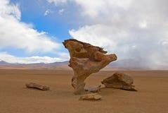 Arbol de piedra, stone tree. Bolivia Stock Images