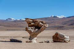 Arbol de Piedra or Stone tree, Altiplano, Bolivia.  Royalty Free Stock Photos