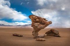 Arbol de piedra, stone tree, Bolivia Stock Image