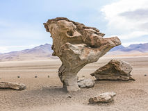 Arbol de Piedra (stone tree) is an isolated rock formation in Bo. Arbol de Piedra (stone tree) is an isolated rock formation in the bolivian desert Royalty Free Stock Image