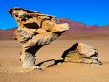 Arbol de Piedra. Stone tree rock formation in desert landscape of Altiplano with blue sky, Bolivia Stock Photography