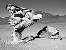 Arbol de Piedra. Stone tree rock formation in desert landscape of Altiplano with blue sky, Bolivia, black and white image Royalty Free Stock Photos