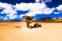 Arbol di Piedra Landscape. Rock formation in the bolivian highlands Stock Images