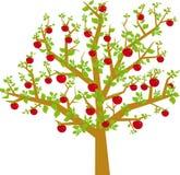 arbol frutas向量 免版税图库摄影