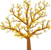 Arbol hojas (Vektor) Stockfoto