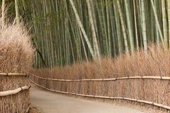Arboleda de bambú, Kyoto Foto de archivo libre de regalías
