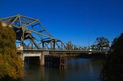 Arboleda de la nuez del puente del delta fotos de archivo