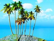Arboleda del coco Foto de archivo libre de regalías