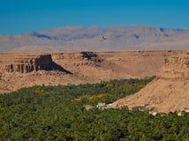 Arboleda enorme de la palma en el valle de Ziz, Marruecos Silueta del hombre de negocios Cowering imagen de archivo