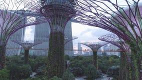 Arboleda estupenda del árbol de la visión aérea en jardines de la bahía y de Marina Bay Sands en Singapur tiro Vista superior del almacen de metraje de vídeo