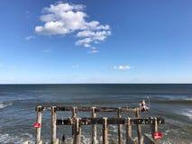 Arboleda New Jersey del océano Imagen de archivo