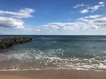 Arboleda New Jersey del océano Fotografía de archivo libre de regalías