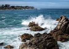 Arboleda pacífica en la bahía de Monterey foto de archivo libre de regalías