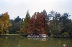 Arborétum d'Ataturk Arbres d'automne autour de lac Image stock