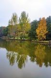 Arborétum d'Ataturk Arbres d'automne autour de lac Images libres de droits